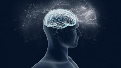 التعلم السريع قوة الدماغ اثنين أفضل من واحد