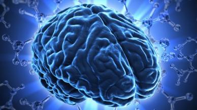 التعلم السريع قوة الدماغ