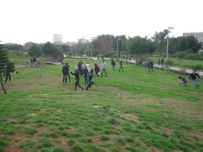 انتشر اعضاء المجموعات في الحديقة يبحثون عن الأجوبة