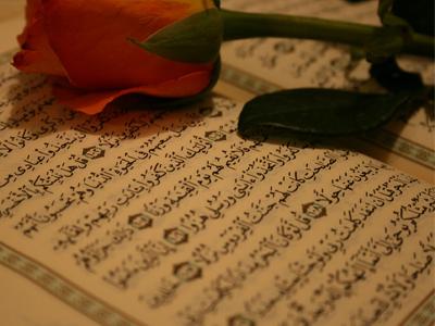 تألقٌ مستمر مع المدربة مؤمنات زرزور في دورة استراتيجيات وتقنيات البرمجة اللغوية العصبية في حفظ القرآن الكريم
