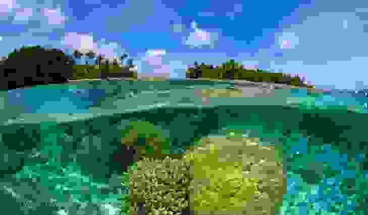 جزر مارشال (181 كيلومتراً مربعاً)