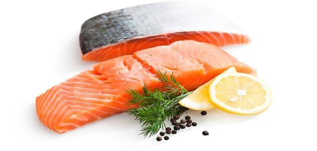 سمك السلمون