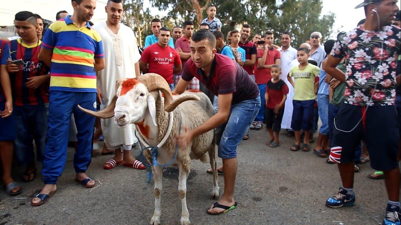عيد الأضحى في الجزائر