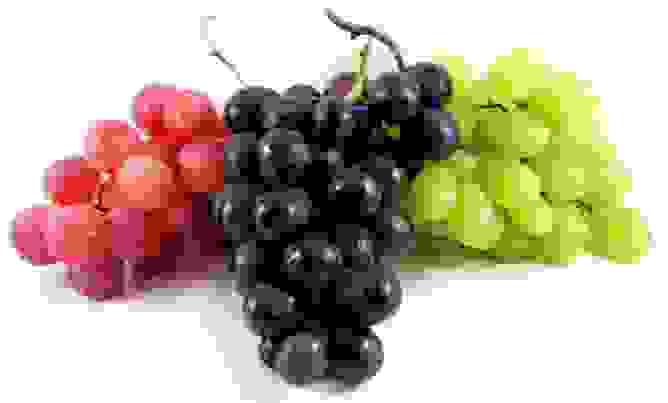 العنب الأحمر والأرجواني