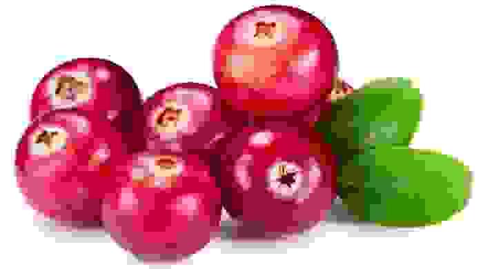 التوت البري (Cranberries)
