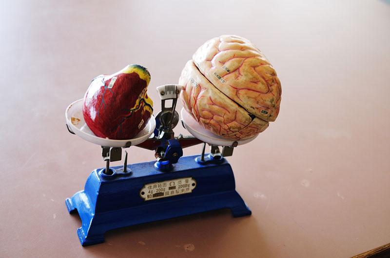 المهارات المعرفية مقابل المهارات الغير معرفية