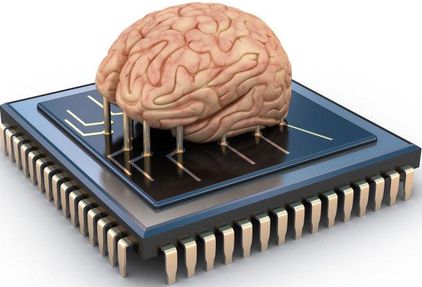 الدماغ وشريحة الذاكرة
